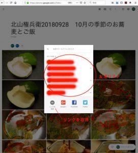 Googlephoto_vew_4
